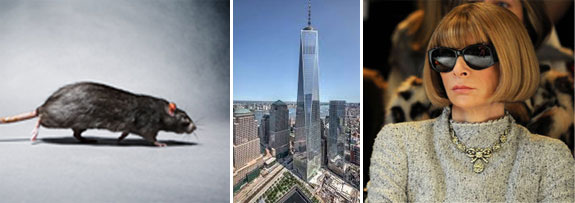 One World Trade Center and Anna Wintour