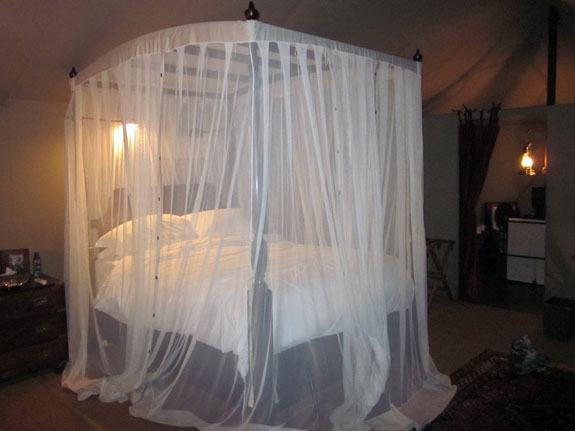 i-was-glad-to-have-a-guard-take-me-back-to-my-tent-since-it-was-pitch-black-outside-and-there-were-wildebeest-bleating-all-around-inside-i-found-my-bed-enveloped-in-mosquito-netting